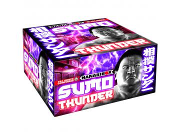 Sumo Thunder - Lesli